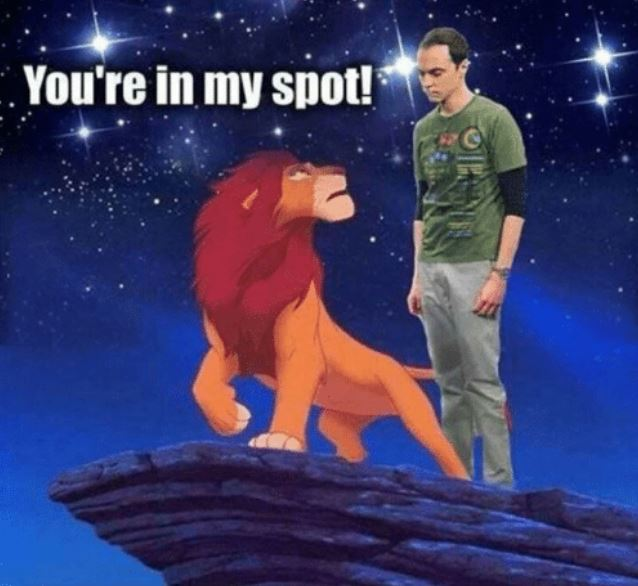 Lion king You are in my spot